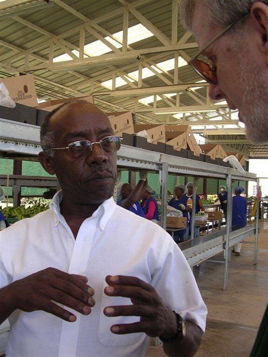 Debebe Daidone, organic farmer