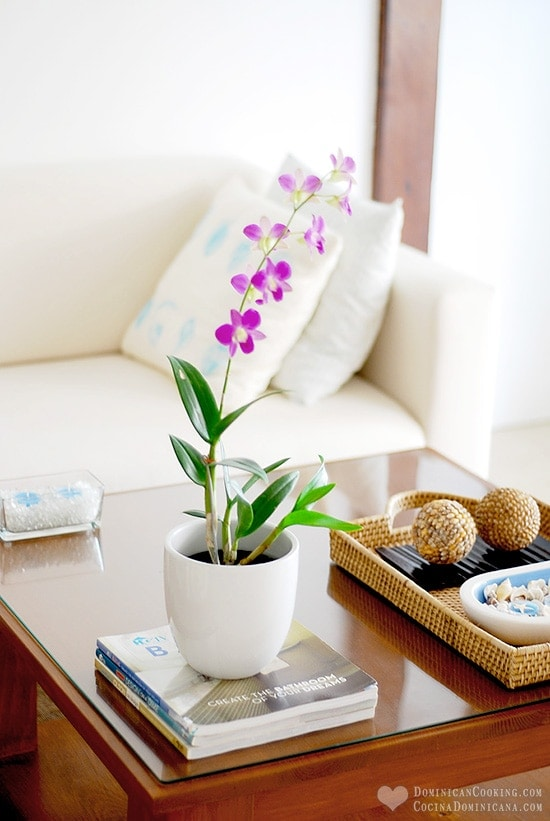 Decor Ideas for a Tropical-Inspired Living Room