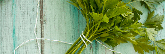 Herbs in Spanish Caribbean Cooking