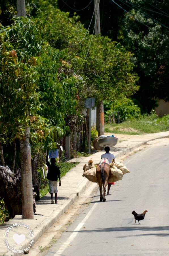 lady, child, and donkey carrying food products on the Dominican border