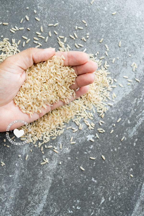 Handful of raw brown rice