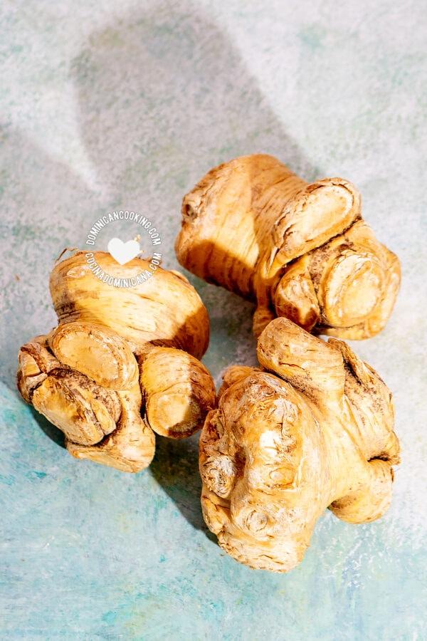 Cepa de Apio (Creole Celery Root)