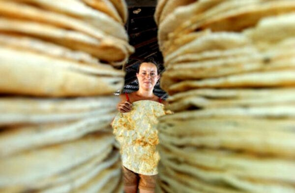 lady making casabe