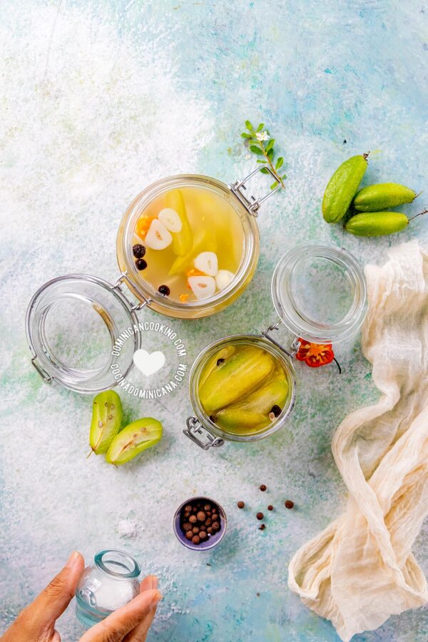 Agrio de vinagrillo y encurtido (Bilimbi pickle and vinegar) and ingredients