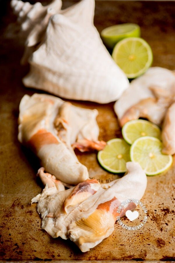 raw conch and shells with lime slices