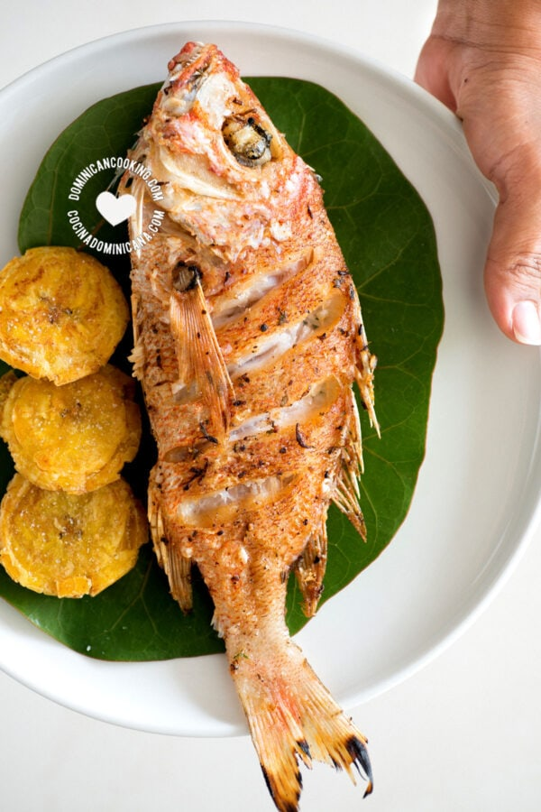 Pescado frito (fried fish) on plate held by hand
