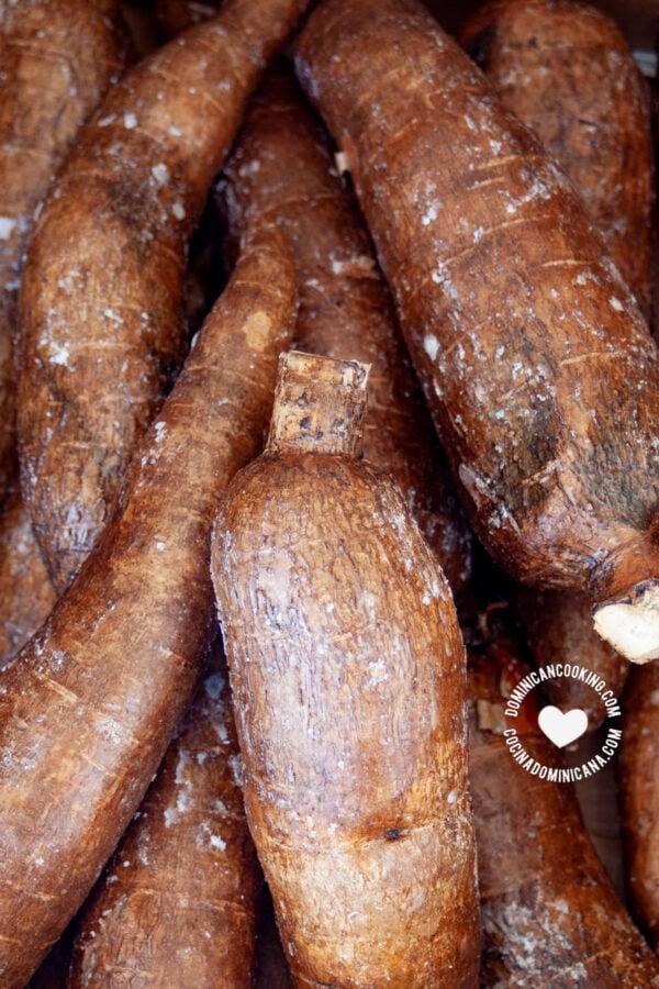 yuca (cassava root)