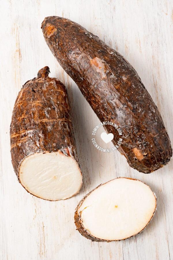 yuca - cassava - mandioca